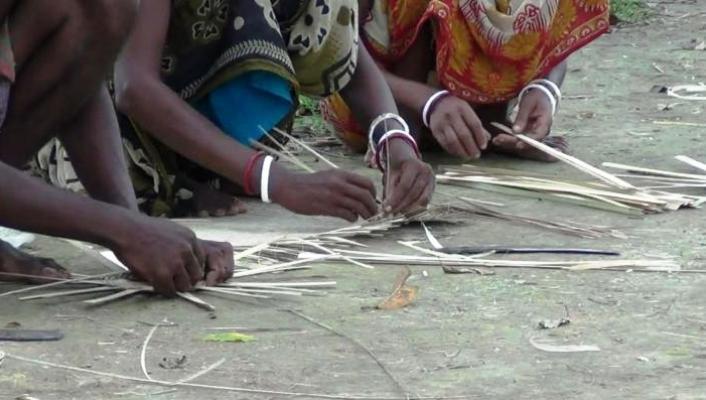 মাহালি জনগোষ্ঠী ক্ষতি পুষিয়ে নিতে বিনা সুদে ঋণ চায়